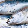 Muốn mắt khỏe hãy ăn cá biển