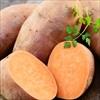Thời điểm vàng ăn khoai lang giảm cân hiệu quả nhất