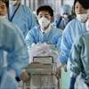 Nhiều dịch bệnh nguy hiểm có nguy cơ bùng phát cận Tết