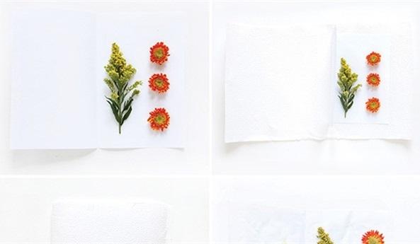 Tự làm tranh hoa khô trang trí phòng khách