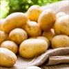 Lý do tuyệt đối không để khoai tây trong tủ lạnh