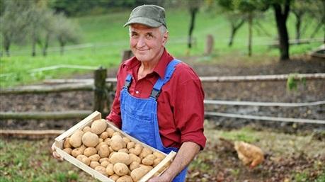 """""""Tuyên chiến với thực phẩm bẩn"""": Hãy trả tiền cho người nông dân bây giờ hoặc trả tiền cho bác sĩ sau này!"""