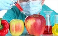 Hãy cẩn thận với những loại trái cây có mã code bắt đầu bằng số 8