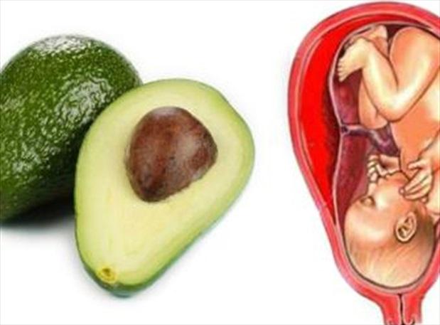 17 thực phẩm này giống hệt và đặc biệt tốt cho các bộ phận cơ thể
