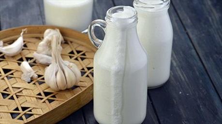 Uống 1 cốc sữa tỏi mỗi ngày không còn đau thần kinh tọa