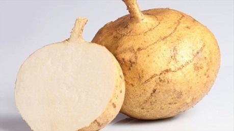 Giúp xương chắc khỏe và chống táo bón cùng củ đậu