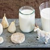 Sữa dê - nguồn dinh dưỡng diệu kỳ