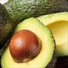 Hạt bơ- nguồn dinh dưỡng và phòng chống bệnh tật cực tốt