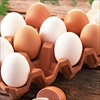 Những quan niệm sai lầm về trứng gà mà nhiều người mắc phải