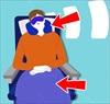 11 lời khuyên hữu ích về cách giữ sức khỏe trên máy bay