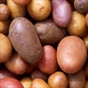 Khoai tây tím và những lợi ích bất ngờ