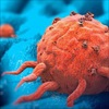 Điểm mặt 4 chất dinh dưỡng là 'khắc tinh' của bệnh ung thư