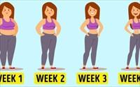 5 bài tập đơn giản giúp bạn giảm mỡ thừa, cải thiện vóc dáng chỉ trong một tháng