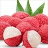Vì sao quả vải được coi là loại trái cây tuyệt vời cho mùa hè?