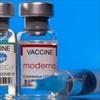 Vaccine COVID-19 mRNA như Pfizer, Moderna giúp giảm khả năng phát tán virus