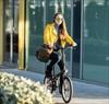 Vì sao đạp xe đi làm được xem là bí quyết kéo dài tuổi thọ?