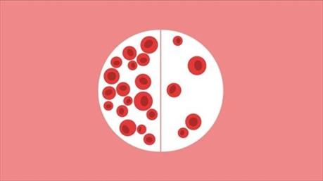 5 lầm tưởng phổ biến về bệnh ung thư máu và sự thật được chuyên gia hé lộ